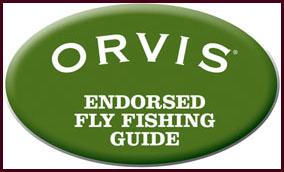 Ovis Guide Logo