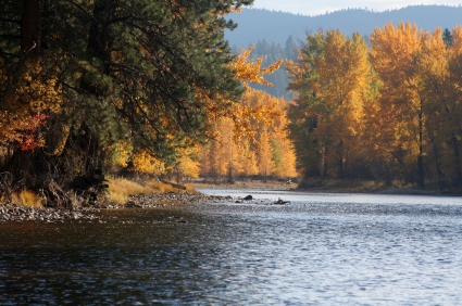 Bitterroot River in the Fall