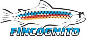 fincognito_logo